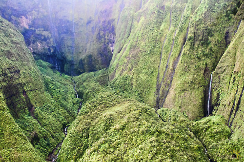 Photograph Of A Jungle Mountain Valley